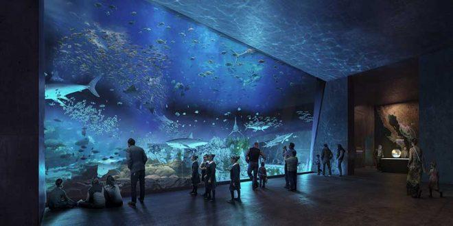 Mazatlán elegido para tener acuario
